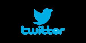de donde viene el nombre de twitter